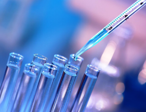 DNA Modification & Methylation