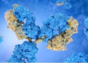RNA Analysis Antibodies