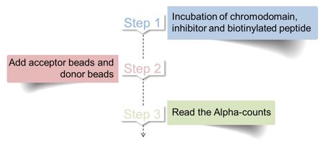 Procedure of chromodomain screening assay