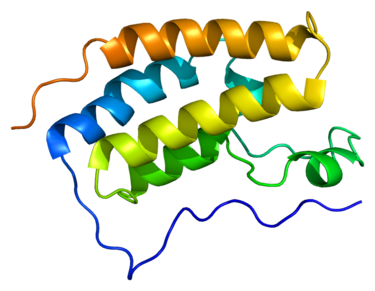 Associated Proteins