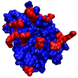 Ipt blood interferon plazminogen