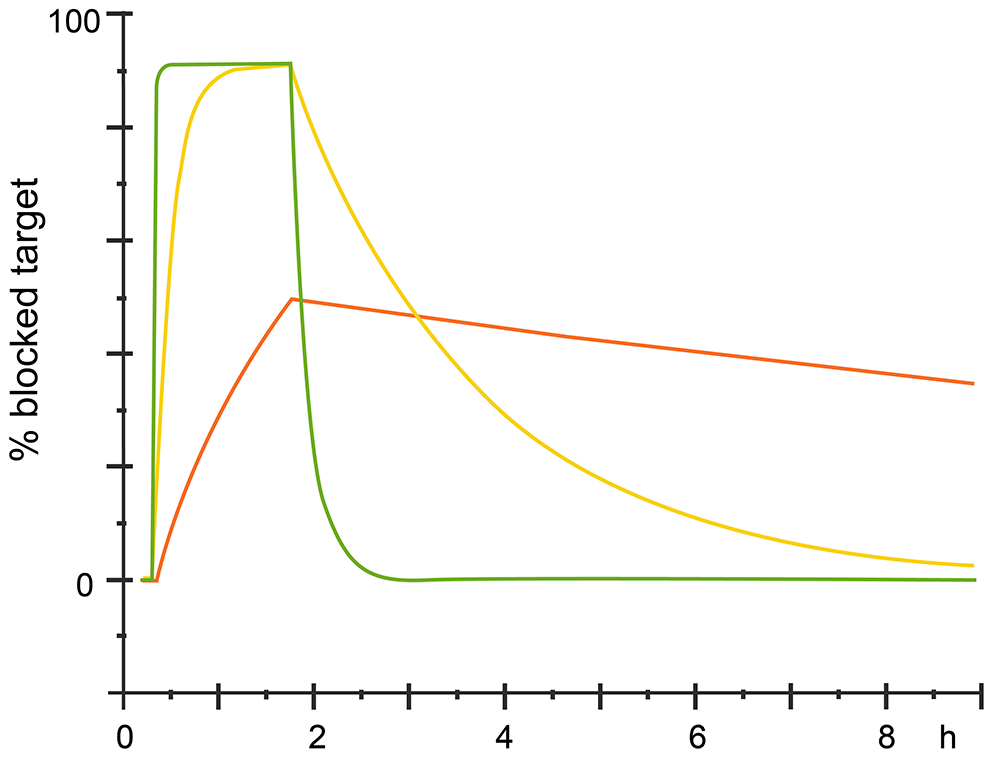 Different kinetics with same affinity