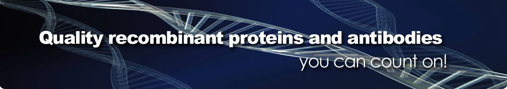 Quality recombinant proteins you can count on!