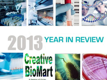 2013 Year in Review: Creative BioMart's Scientific Expertise in Recombinant Protein Production